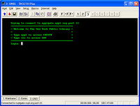 Sample VT100 terminal emulation screen